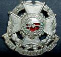 1st Volunteer Battalion Border Regiment Collar Badge.jpg