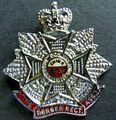 Regimental Association badge (Queen's Crown).jpg