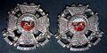 Officer's Collar Badges (Pair).jpg