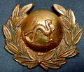 Victorian Militia Collar Badge.jpg